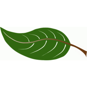 Free animated clipart green leaf.