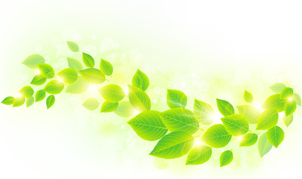 Abstract summer background green leaves free vector download.