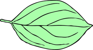 Light green leaves clipart png.
