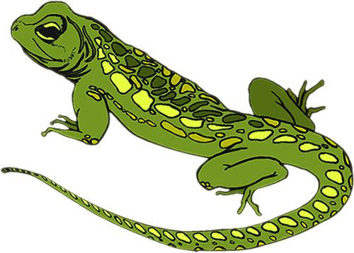 Lizard Clipart & Lizard Clip Art Images.