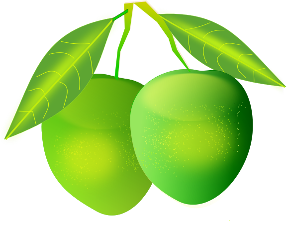 Green mango clipart - Clipground