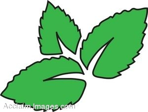 Clip Art of Green Leaves.