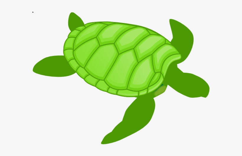 Sea Turtle Clipart Small Turtle.