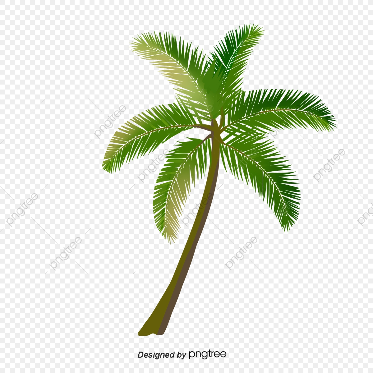 Cartoon Green Palm Tree, Clip Art, Hand Painted, Leaf PNG and Vector.