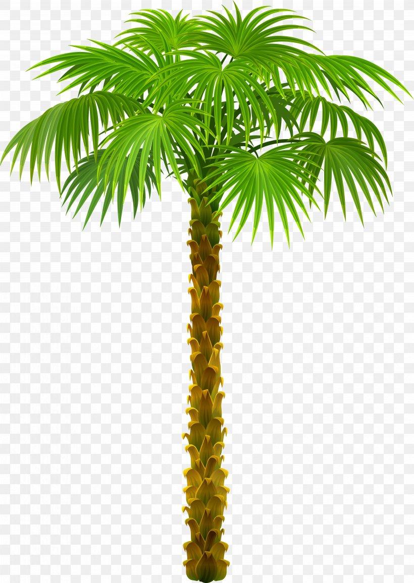 Palm Trees Clip Art, PNG, 5989x8449px, Arecaceae, Areca Nut.
