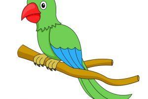 Green parrot clipart 2 » Clipart Portal.