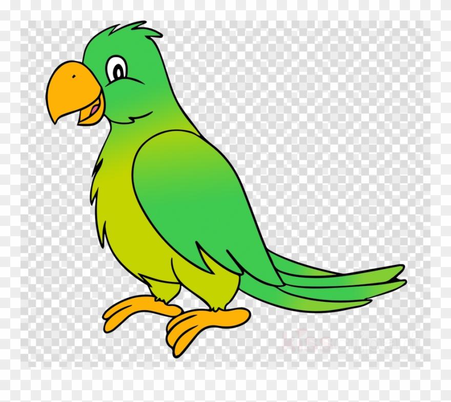 Parrot Clipart Parrot Budgerigar Clip Art.