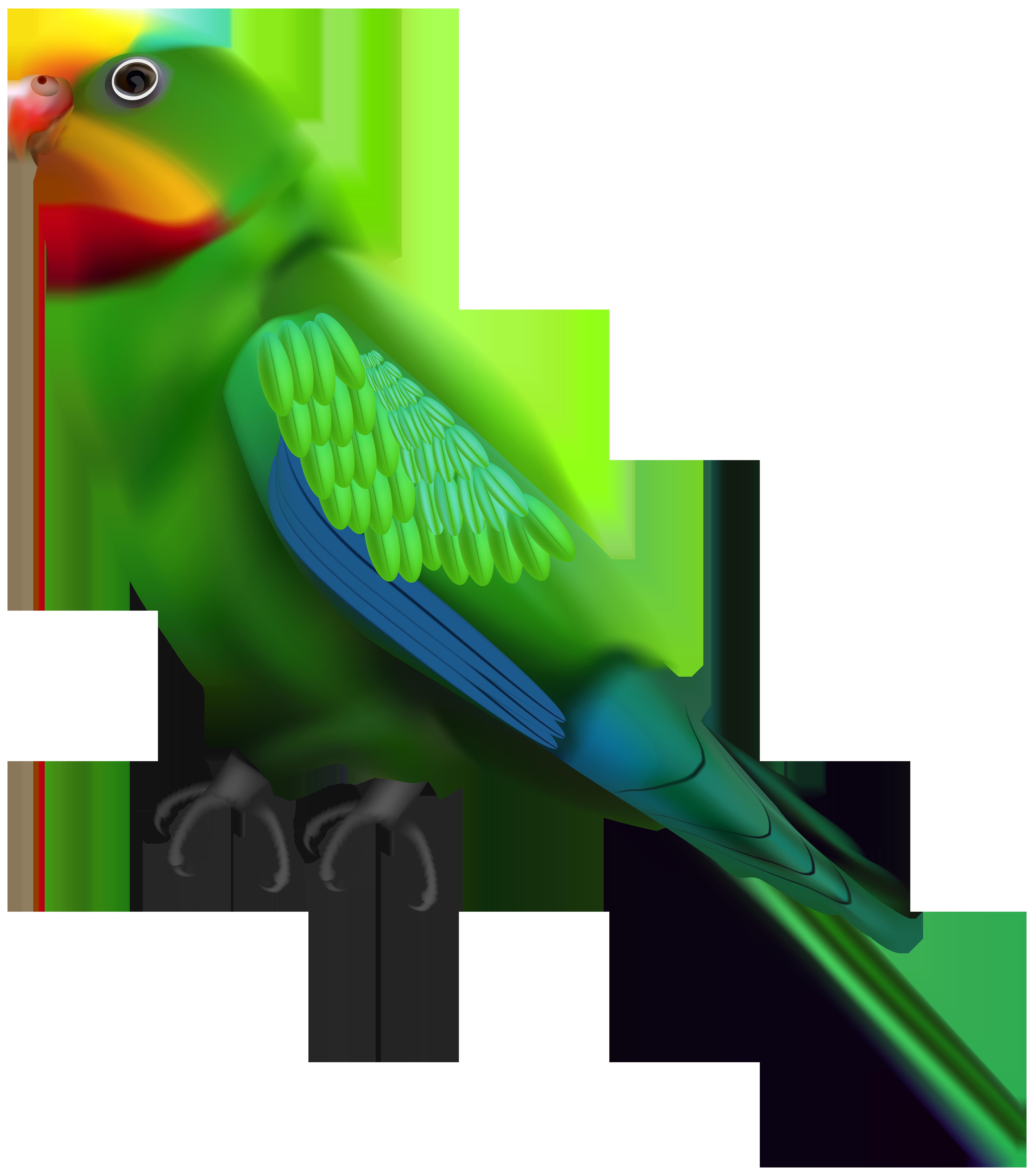 Green Parrot Transparent Clip Art Image.