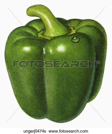 Clip Art of An illustration of a green pepper szo0552.