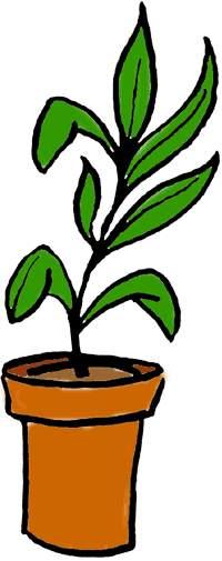 Dark Green Plants Clip Art.