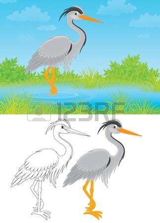 1,717 Heron Stock Illustrations, Cliparts And Royalty Free Heron.