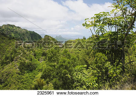 Stock Photography of Hawaii, Oahu, Ko'olau Mountains, Lush green.