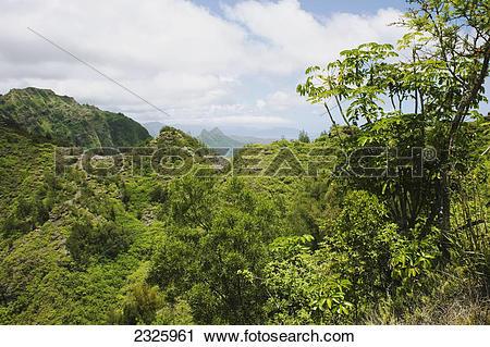 Stock Photography of Hawaii, Oahu, Ko'olau Mountains, Lush green.
