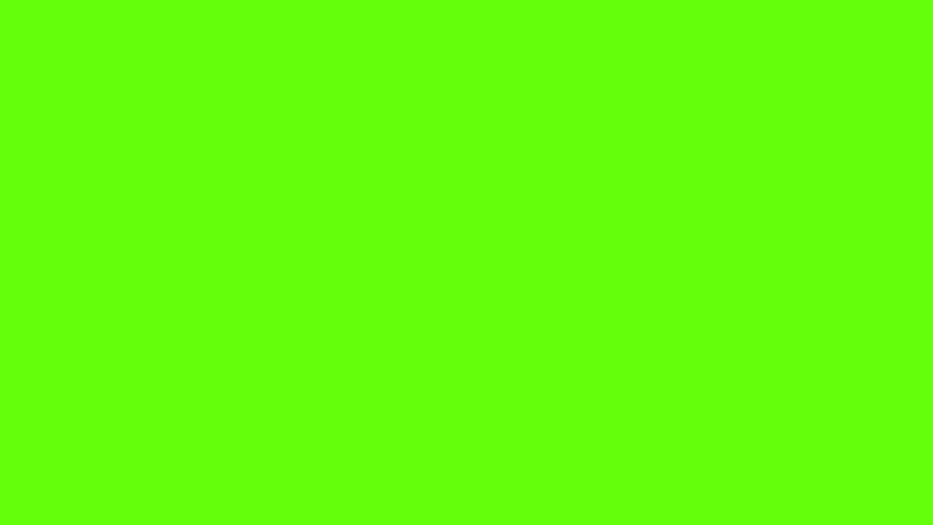 Animation of Branch Vegetate. Green Vidéos de stock (100 % libres de droit)  6394607.