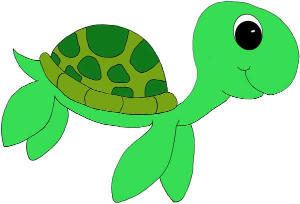 Green sea turtle clipart 20 free Cliparts | Download ...
