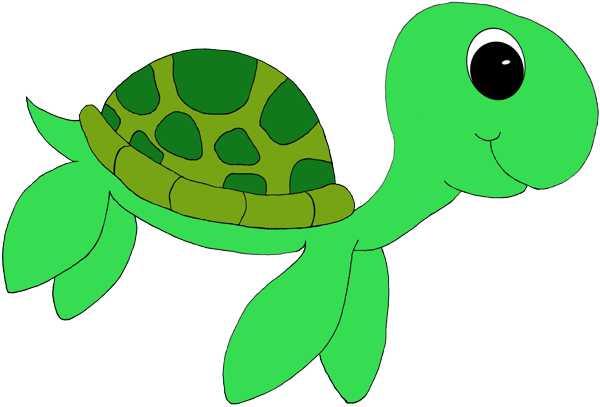 Cartoon Sea Turtle Clipart.