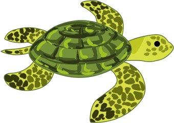Sea turtles clipart.