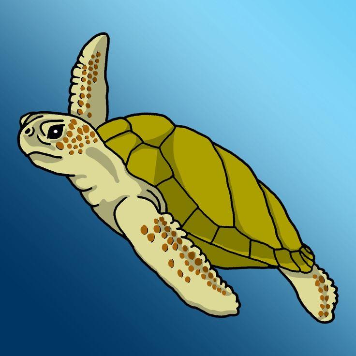 Loggerhead Sea Turtle Clipart.