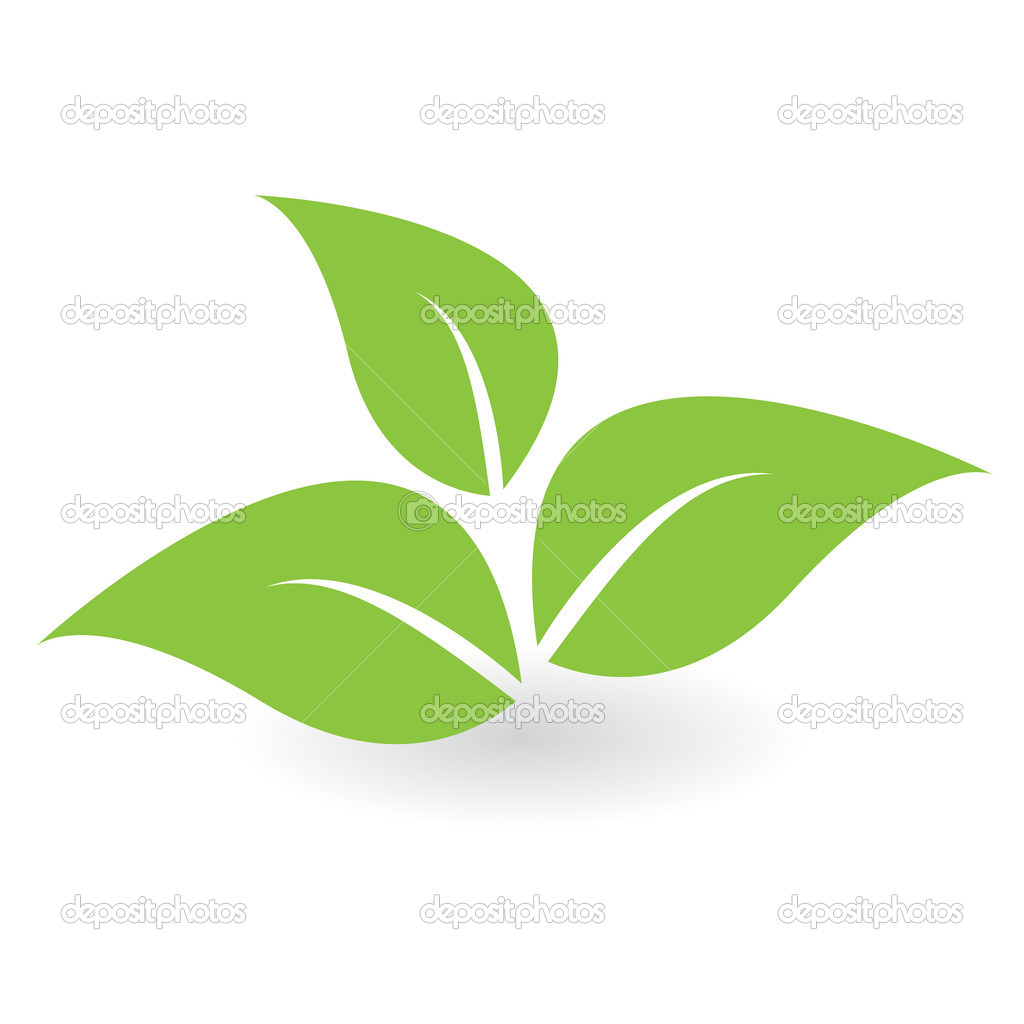 Green sheet — Stock Vector © brux17 #3547926.