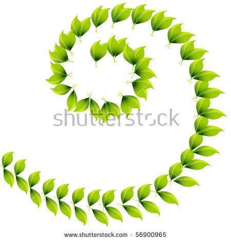 Green Spiral Plant Stock Photos, Royalty.