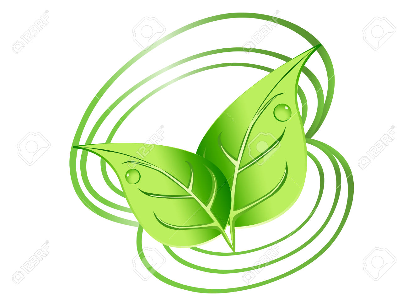 Green Leaves Design With Drops And Spirals Royalty Free Cliparts.