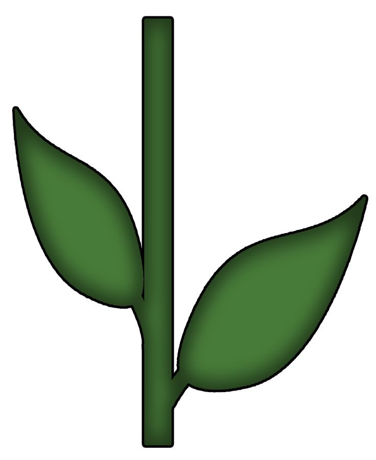 Template Of Petals Stem And Leaves.