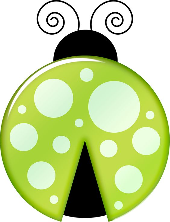 Lime green ladybug.