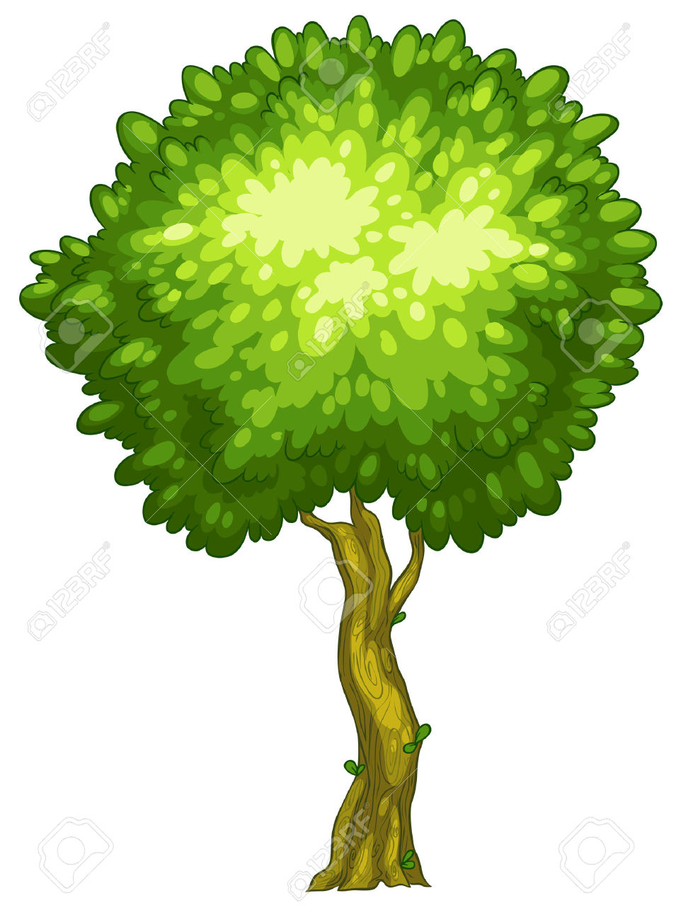 5,701 Tall Tree Stock Illustrations, Cliparts And Royalty Free.