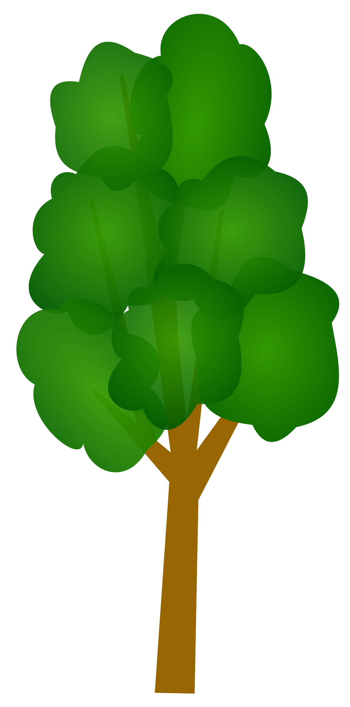 green tall trees clipart clipground