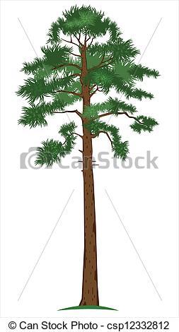 Tall tree clip art.