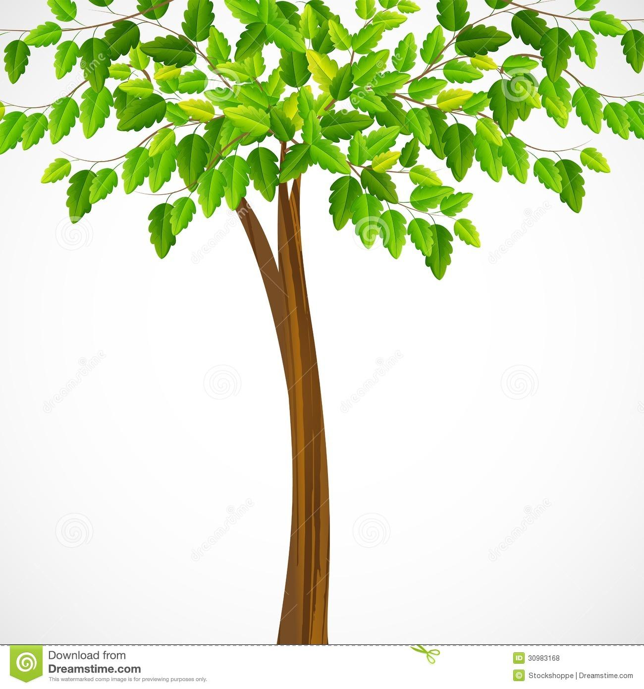 Green Tree Royalty Free Stock Photos.
