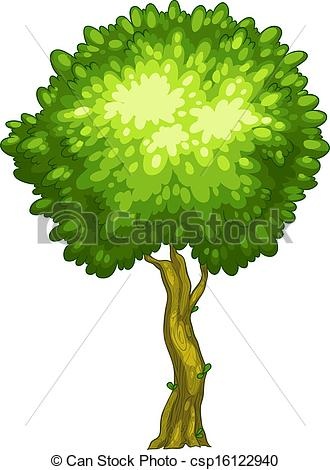 Tall tree Vector Clip Art EPS Images. 2,437 Tall tree clipart.