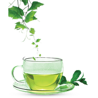 Download Green Tea Free PNG photo images and clipart.