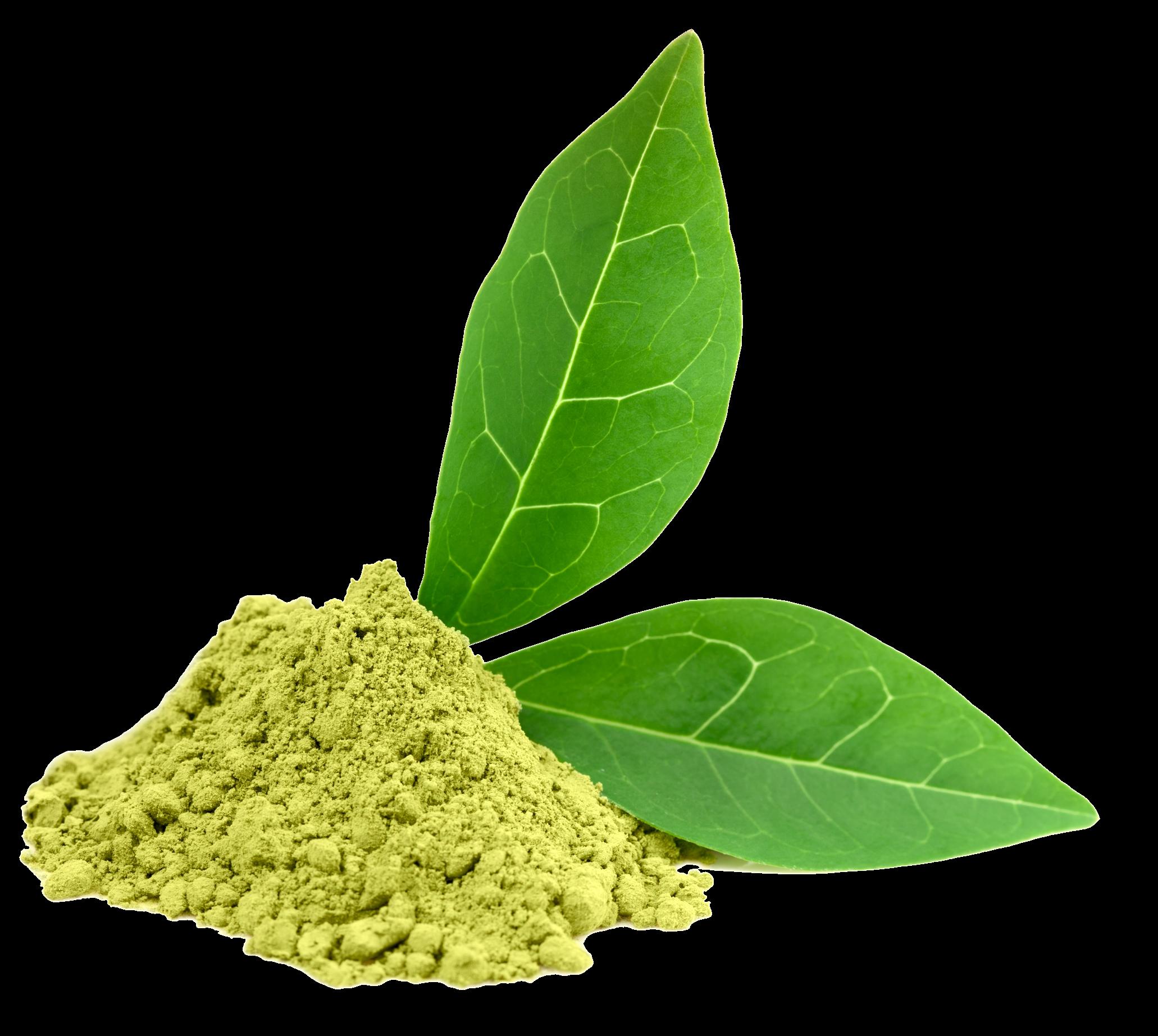 HQ Green Tea PNG Transparent Green Tea.PNG Images..