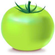 Green tomato clipart.