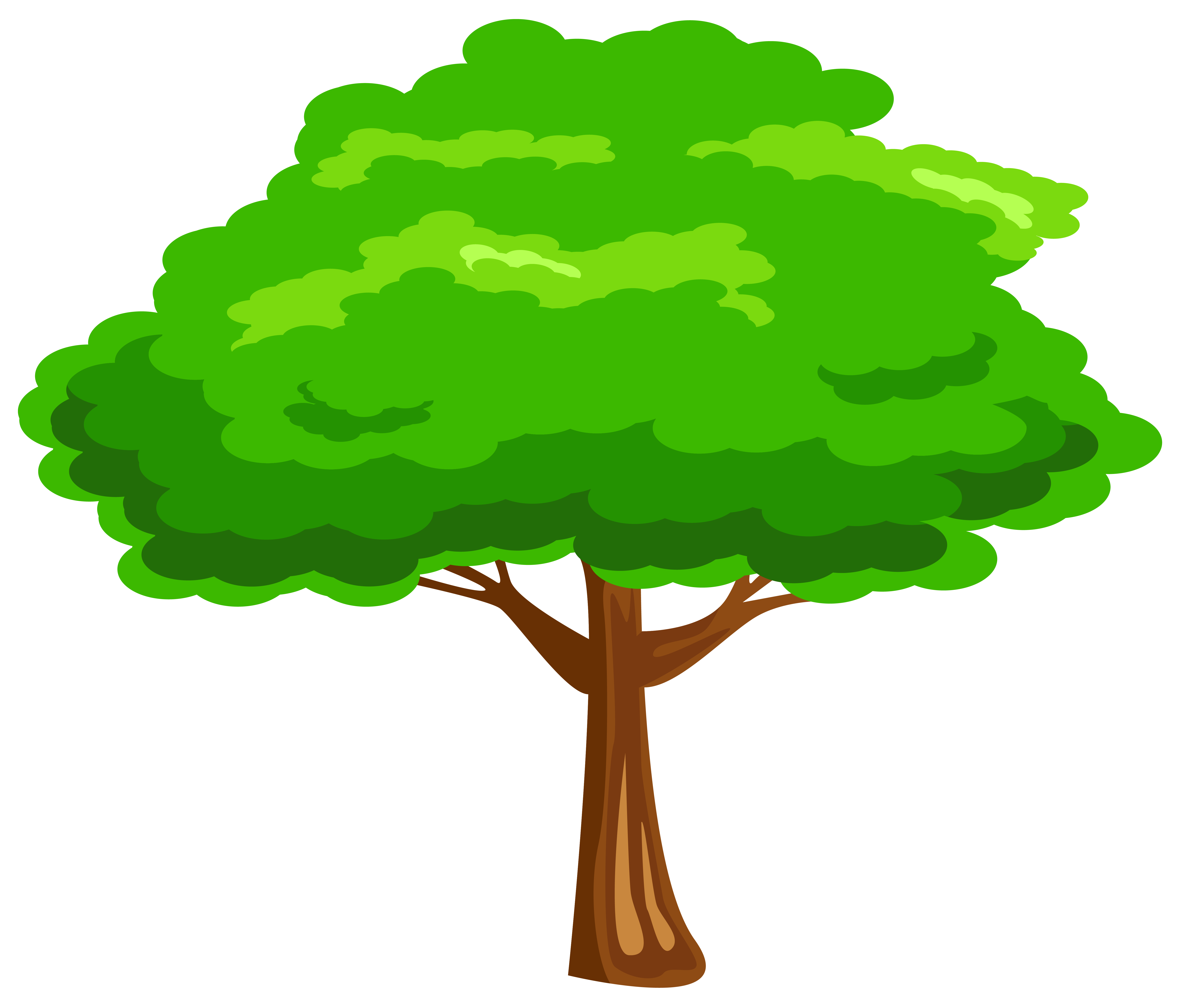 tree clipart clipground cliparts