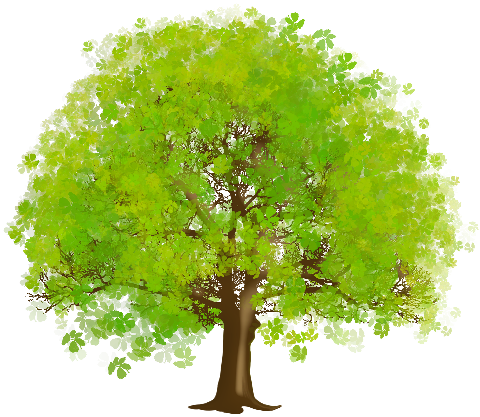 Green tree clipart 20 free Cliparts | Download images on ...
