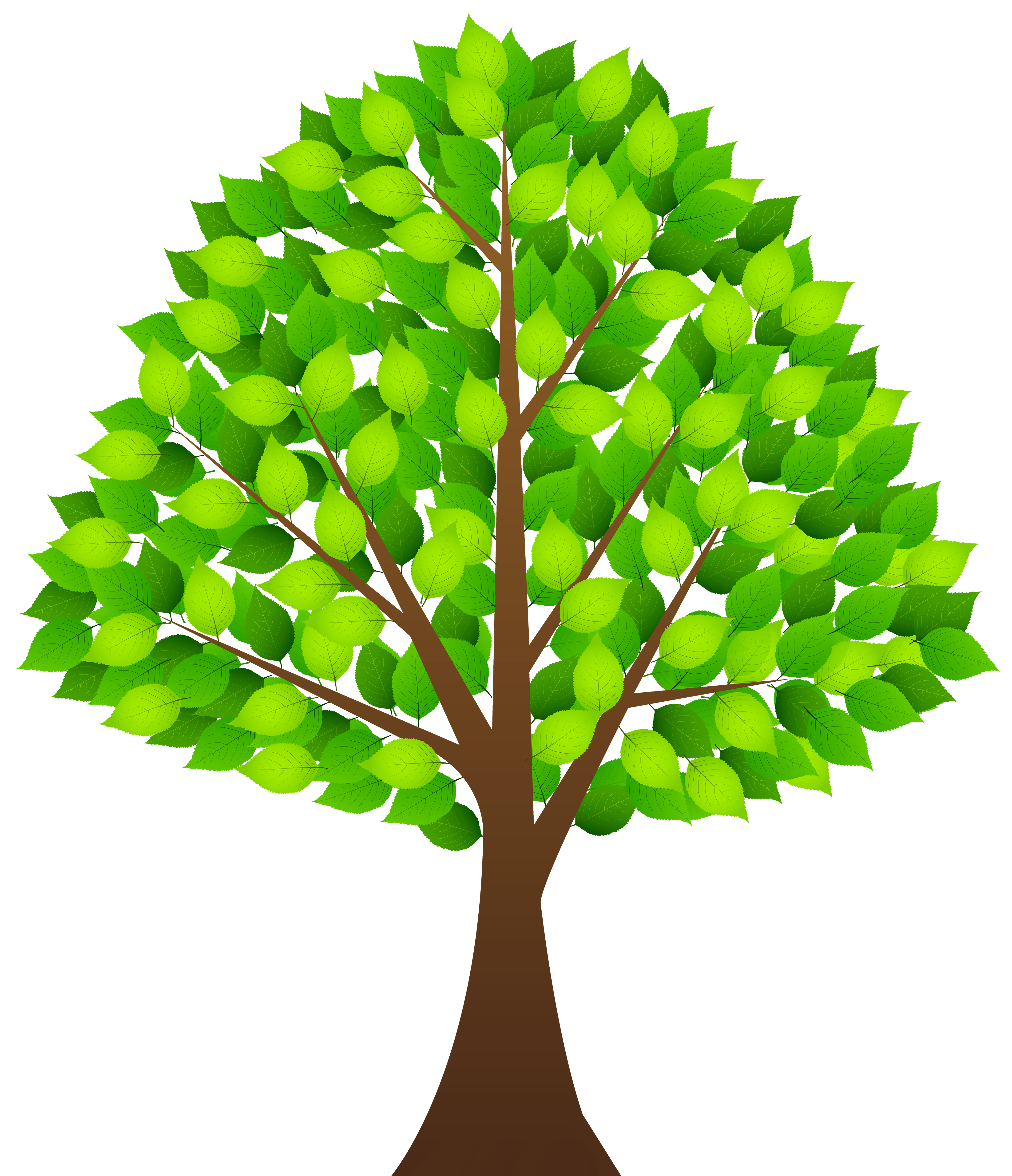 Green tree foliage clipart 20 free Cliparts | Download ...