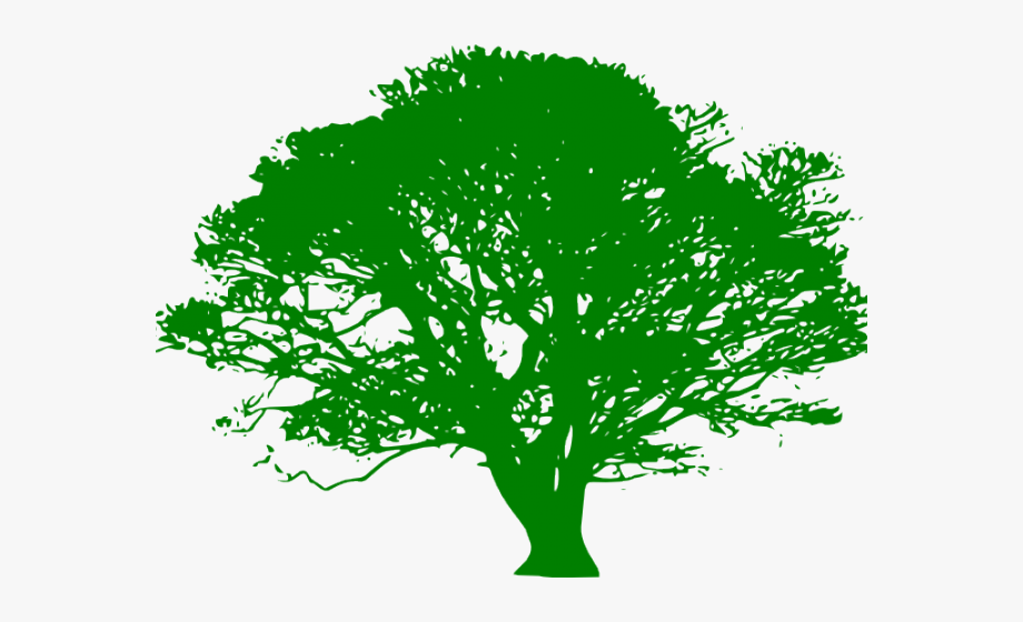 Trees Clipart Green.