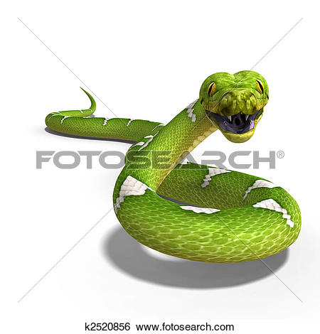 Stock Illustration of green tree python k2520856.