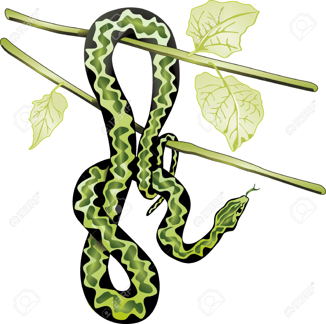 Snake On Tree Royalty Free Cliparts, Vectors, And Stock.