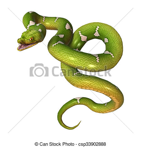 Stock Illustration of Green Tree Python on White.