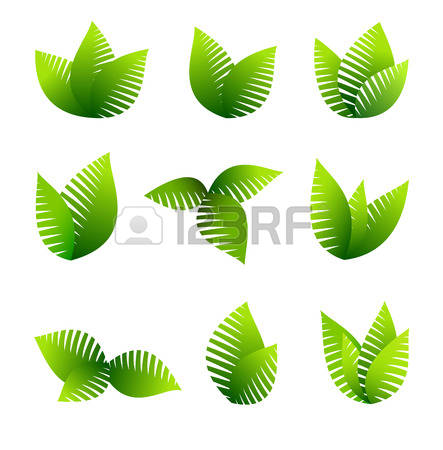 428 Growing Green Vegetation Stock Vector Illustration And Royalty.