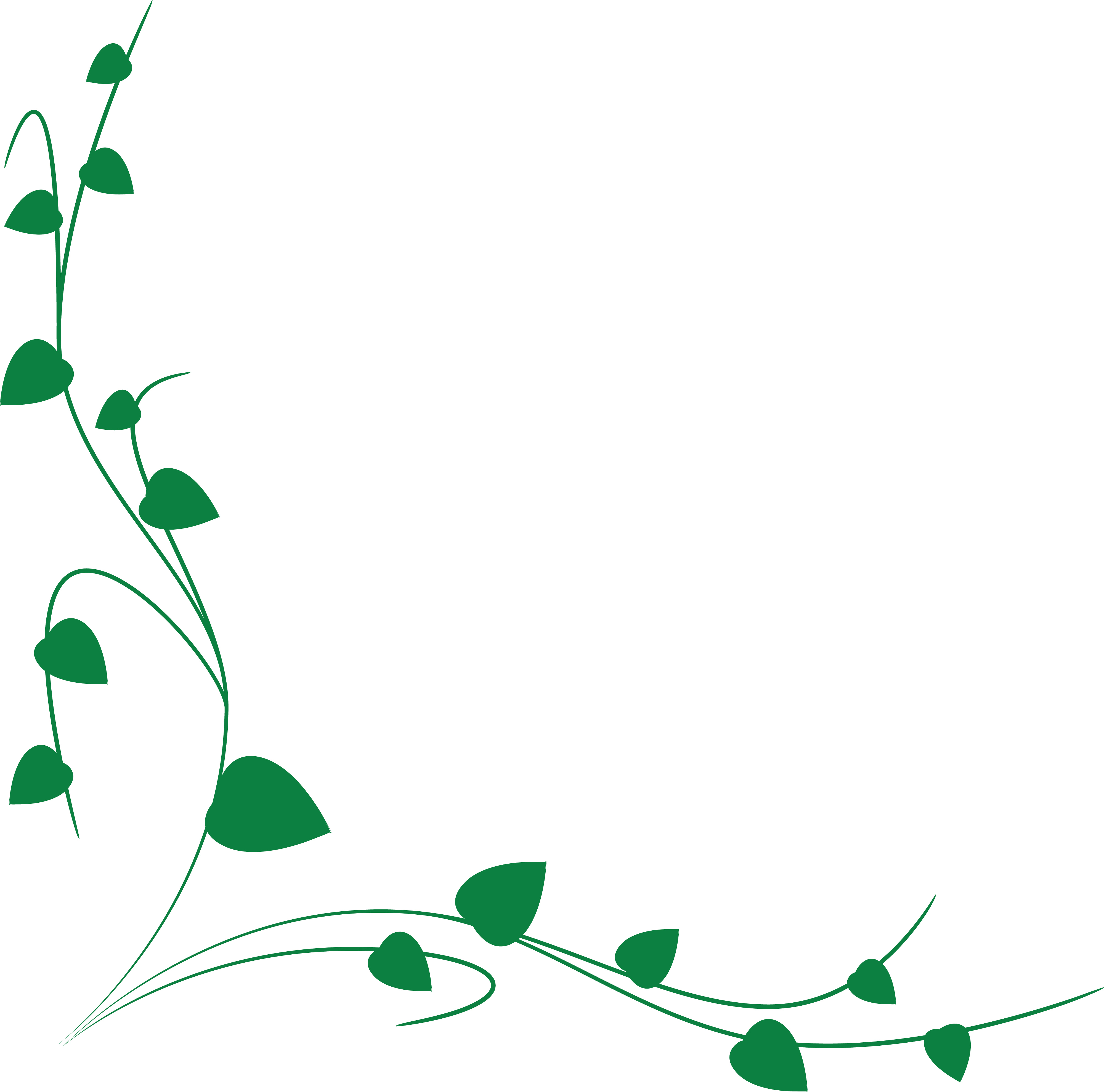 Free Clipart Of A green vine border » Clipart Station.