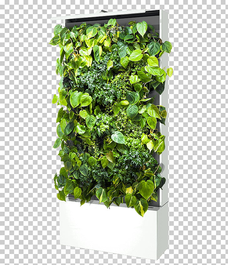 Green wall Sustainable design Parede Flowerpot, green wall.