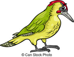 Green woodpecker Vector Clipart Royalty Free. 41 Green woodpecker.