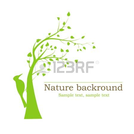 70 Green Woodpecker Stock Vector Illustration And Royalty Free.