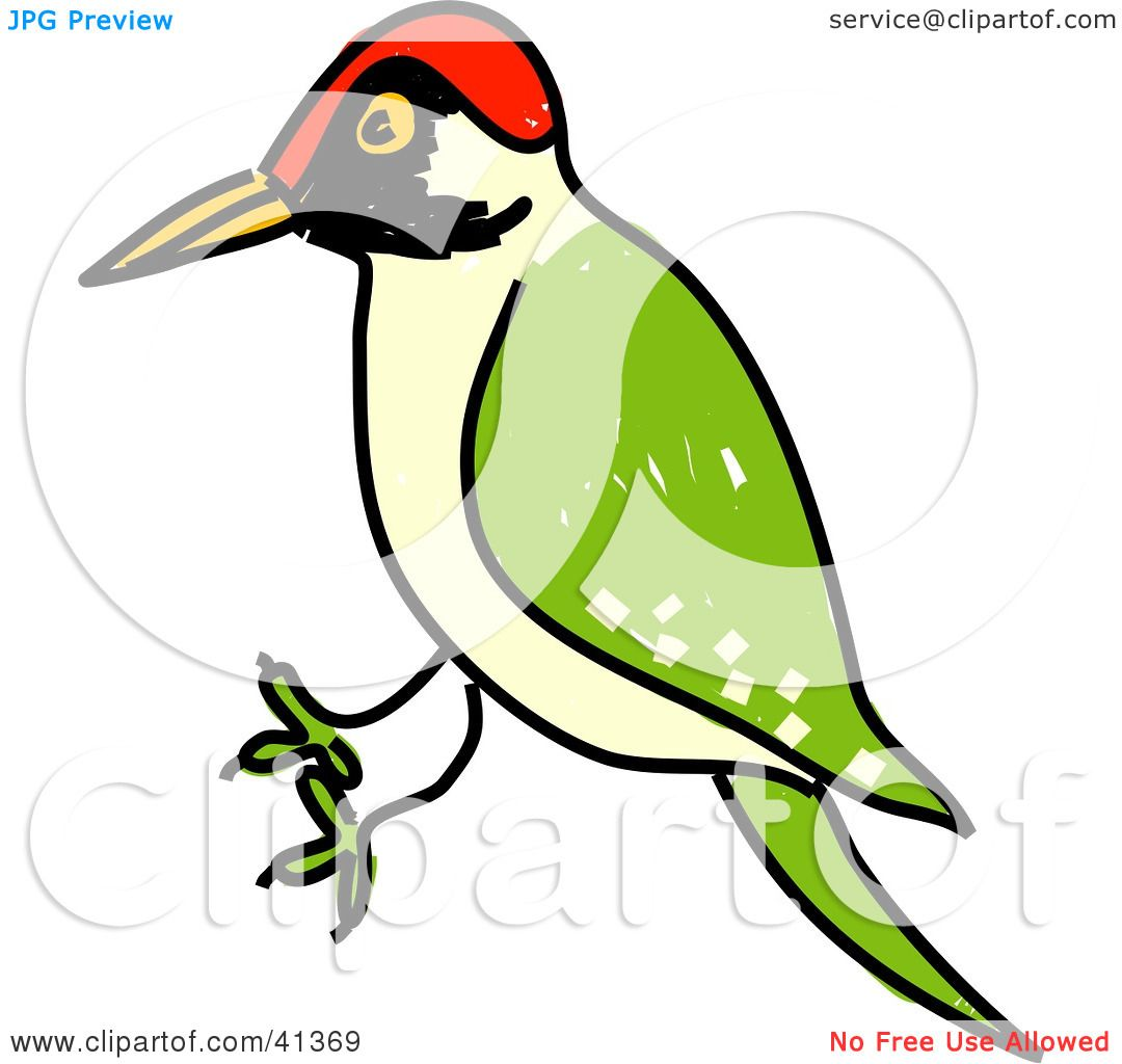 Clipart Illustration of a Green Woodpecker (Picus Viridis) With A.