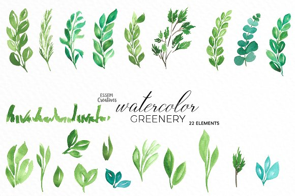 Watercolor Greenery Leaves Clipart.