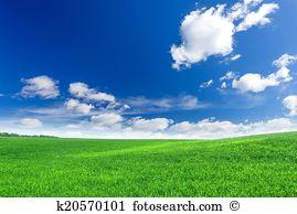 Grow green Images and Stock Photos. 508,365 grow green photography.
